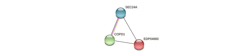 EDP04660 protein (Chlamydomonas reinhardtii) - STRING interaction network