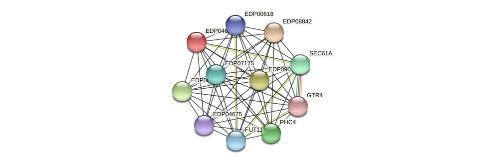 EDP04693 protein (Chlamydomonas reinhardtii) - STRING interaction network