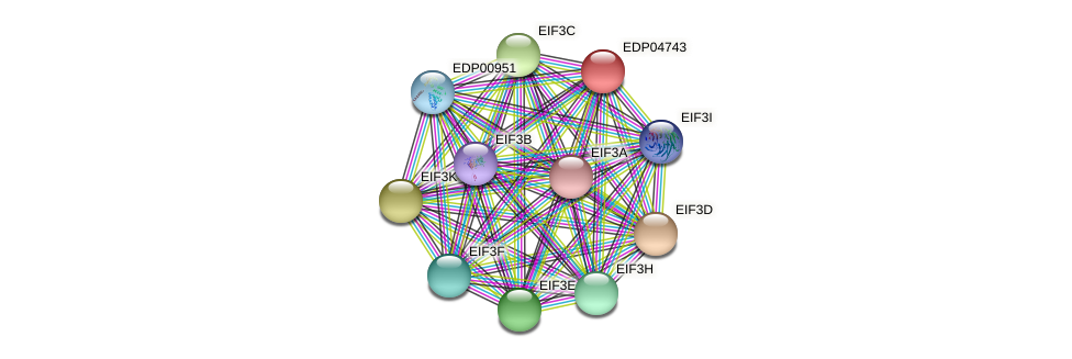 EDP04743 protein (Chlamydomonas reinhardtii) - STRING interaction network