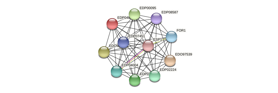 EDP04836 protein (Chlamydomonas reinhardtii) - STRING interaction network