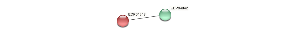 EDP04843 protein (Chlamydomonas reinhardtii) - STRING interaction network