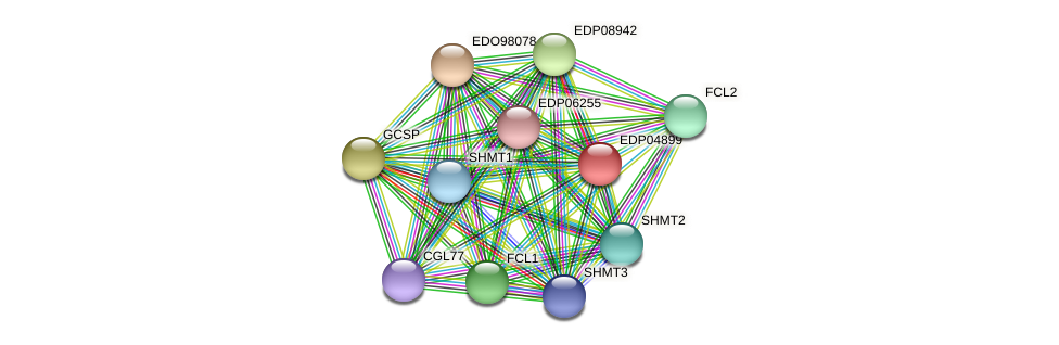 EDP04899 protein (Chlamydomonas reinhardtii) - STRING interaction network