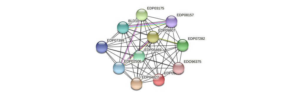 EDP05058 protein (Chlamydomonas reinhardtii) - STRING interaction network
