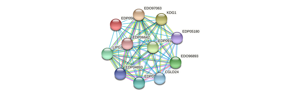 EDP05075 protein (Chlamydomonas reinhardtii) - STRING interaction network