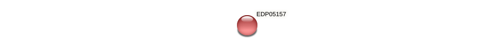 EDP05157 protein (Chlamydomonas reinhardtii) - STRING interaction network