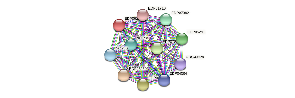EDP05259 protein (Chlamydomonas reinhardtii) - STRING interaction network
