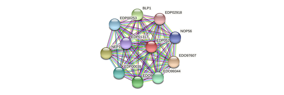 EDP05291 protein (Chlamydomonas reinhardtii) - STRING interaction network