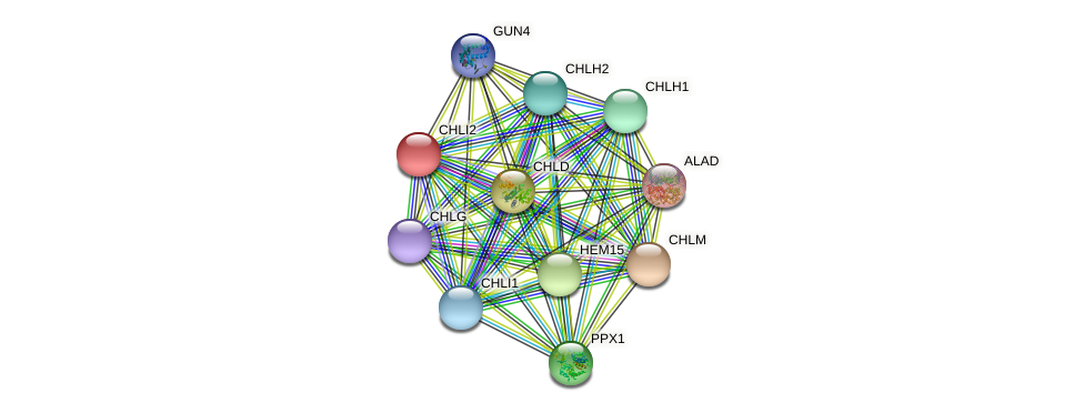 CHLI2 protein (Chlamydomonas reinhardtii) - STRING interaction network