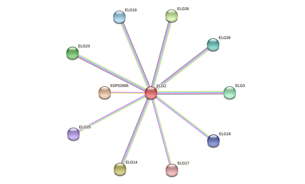 ELG2 protein (Chlamydomonas reinhardtii) - STRING interaction network