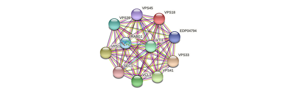 VPS18 protein (Chlamydomonas reinhardtii) - STRING interaction network
