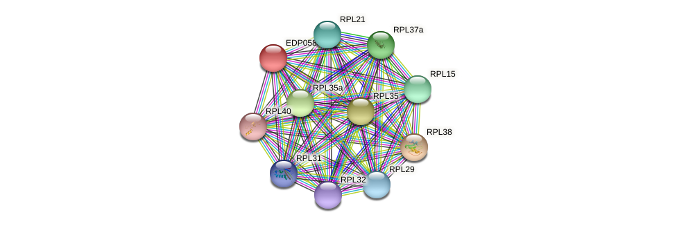 EDP05887 protein (Chlamydomonas reinhardtii) - STRING interaction network