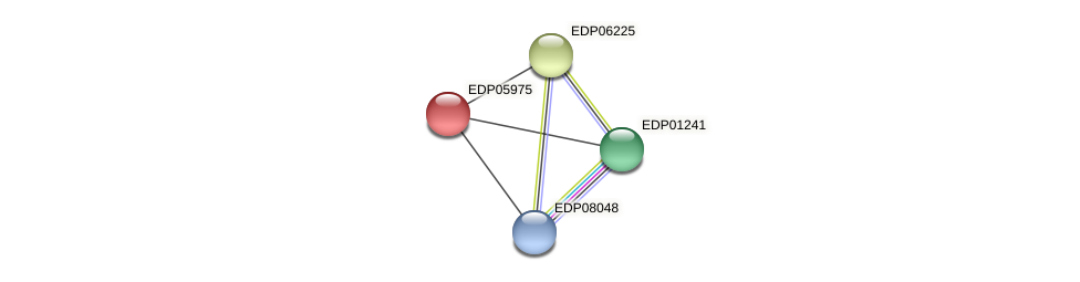 EDP05975 protein (Chlamydomonas reinhardtii) - STRING interaction network
