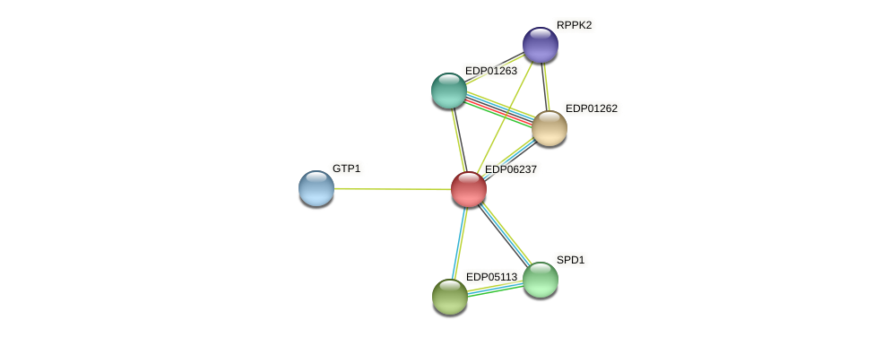 EDP06237 protein (Chlamydomonas reinhardtii) - STRING interaction network