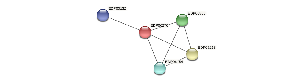 EDP06270 protein (Chlamydomonas reinhardtii) - STRING interaction network