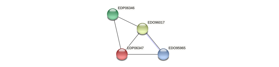 EDP06347 protein (Chlamydomonas reinhardtii) - STRING interaction network