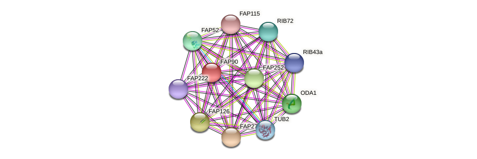 FAP90 protein (Chlamydomonas reinhardtii) - STRING interaction network