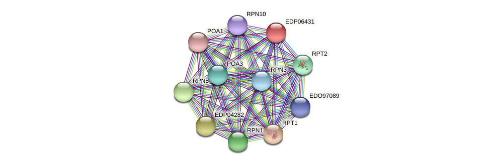 EDP06431 protein (Chlamydomonas reinhardtii) - STRING interaction network
