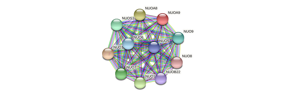 NUOA9 protein (Chlamydomonas reinhardtii) - STRING interaction network