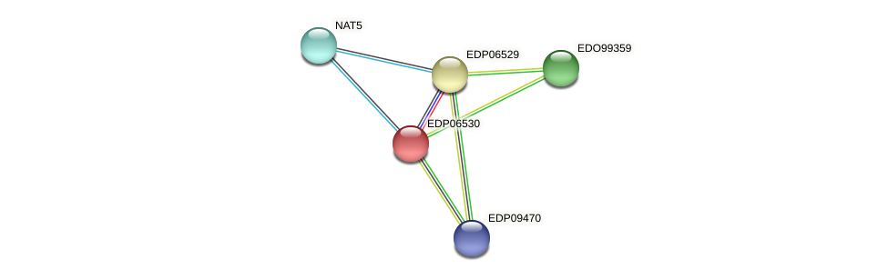 EDP06530 protein (Chlamydomonas reinhardtii) - STRING interaction network