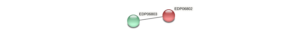 EDP06802 protein (Chlamydomonas reinhardtii) - STRING interaction network