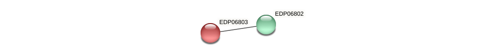 EDP06803 protein (Chlamydomonas reinhardtii) - STRING interaction network