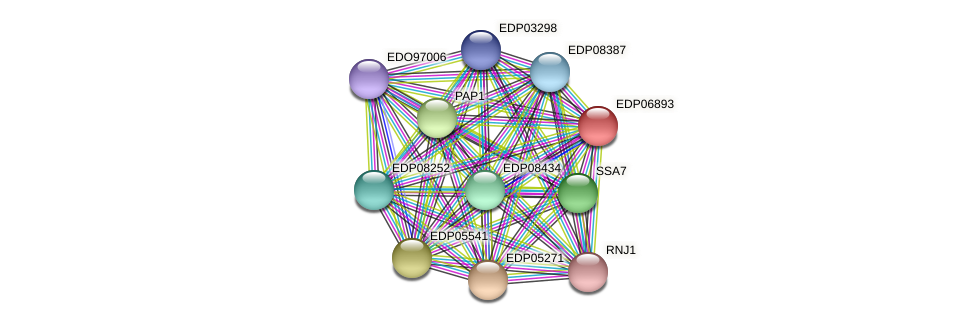 EDP06893 protein (Chlamydomonas reinhardtii) - STRING interaction network