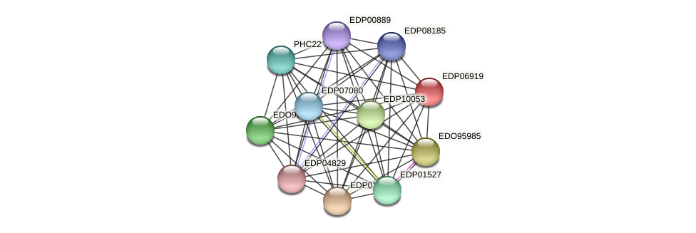 EDP06919 protein (Chlamydomonas reinhardtii) - STRING interaction network