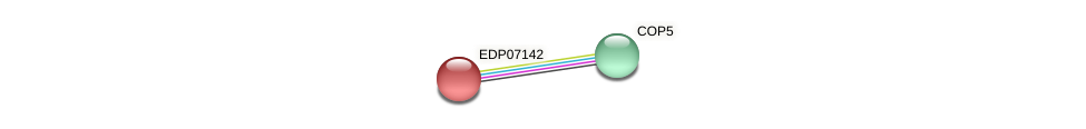 EDP07142 protein (Chlamydomonas reinhardtii) - STRING interaction network