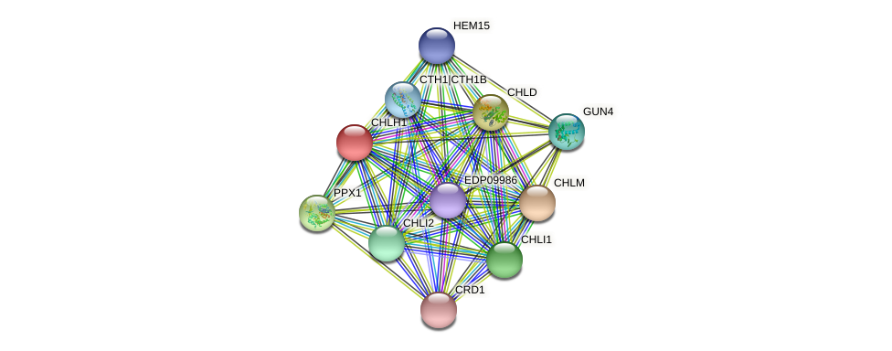 CHLH1 protein (Chlamydomonas reinhardtii) - STRING interaction network