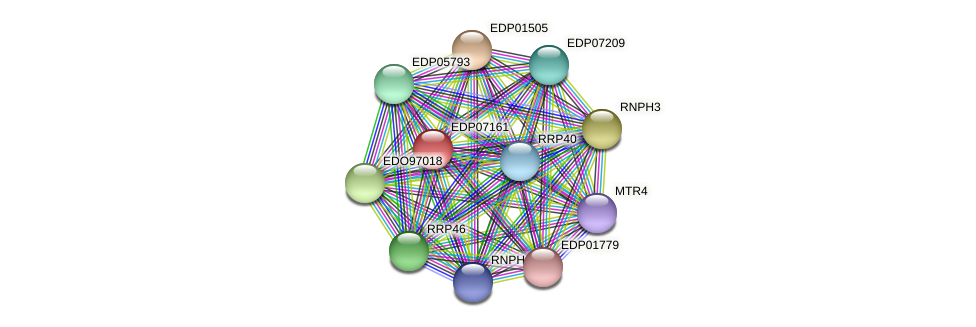 EDP07161 protein (Chlamydomonas reinhardtii) - STRING interaction network