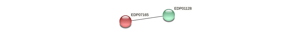 EDP07165 protein (Chlamydomonas reinhardtii) - STRING interaction network