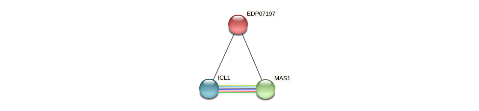 EDP07197 protein (Chlamydomonas reinhardtii) - STRING interaction network