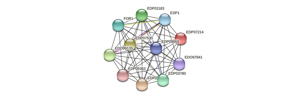 EDP07214 protein (Chlamydomonas reinhardtii) - STRING interaction network