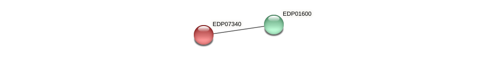 EDP07340 protein (Chlamydomonas reinhardtii) - STRING interaction network