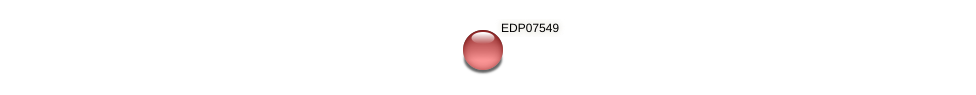 EDP07549 protein (Chlamydomonas reinhardtii) - STRING interaction network