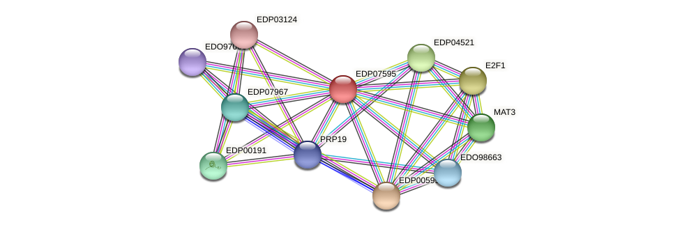 EDP07595 protein (Chlamydomonas reinhardtii) - STRING interaction network