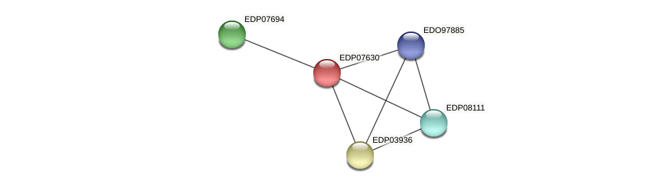 EDP07630 protein (Chlamydomonas reinhardtii) - STRING interaction network