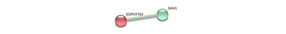 EDP07704 protein (Chlamydomonas reinhardtii) - STRING interaction network