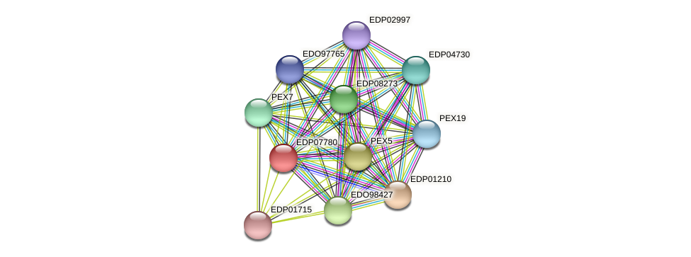 EDP07780 protein (Chlamydomonas reinhardtii) - STRING interaction network