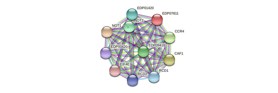 EDP07811 protein (Chlamydomonas reinhardtii) - STRING interaction network