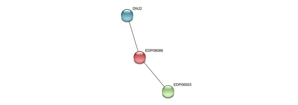 EDP08088 protein (Chlamydomonas reinhardtii) - STRING interaction network