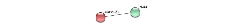 EDP08142 protein (Chlamydomonas reinhardtii) - STRING interaction network