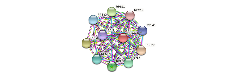 RPS27a protein (Chlamydomonas reinhardtii) - STRING interaction network
