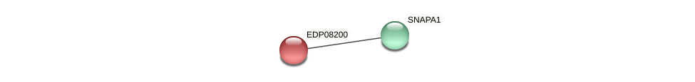 EDP08200 protein (Chlamydomonas reinhardtii) - STRING interaction network