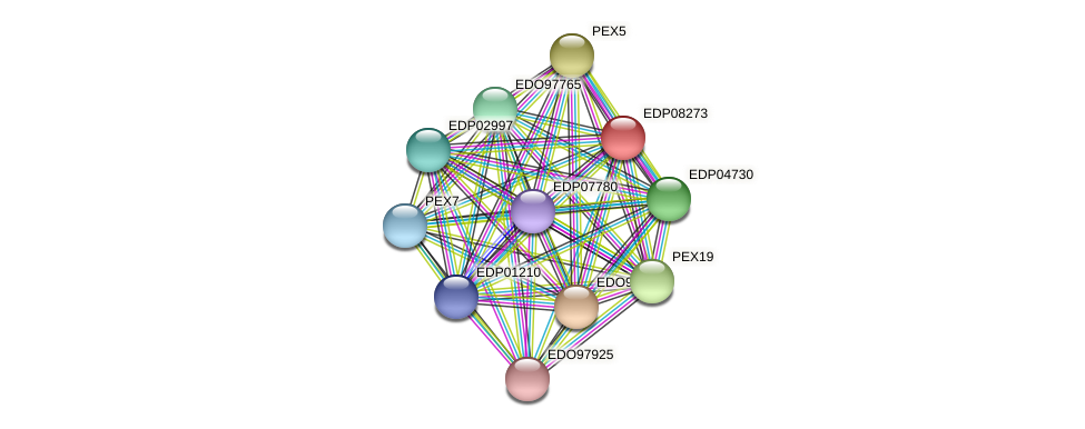 EDP08273 protein (Chlamydomonas reinhardtii) - STRING interaction network