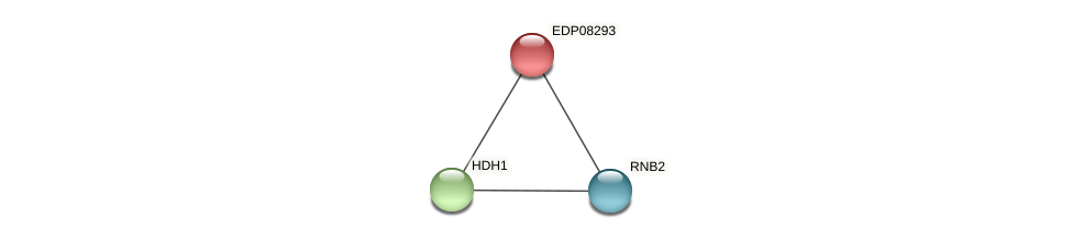 EDP08293 protein (Chlamydomonas reinhardtii) - STRING interaction network