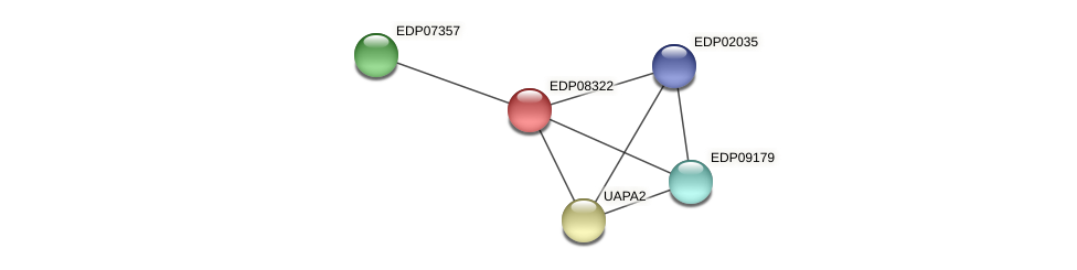 EDP08322 protein (Chlamydomonas reinhardtii) - STRING interaction network
