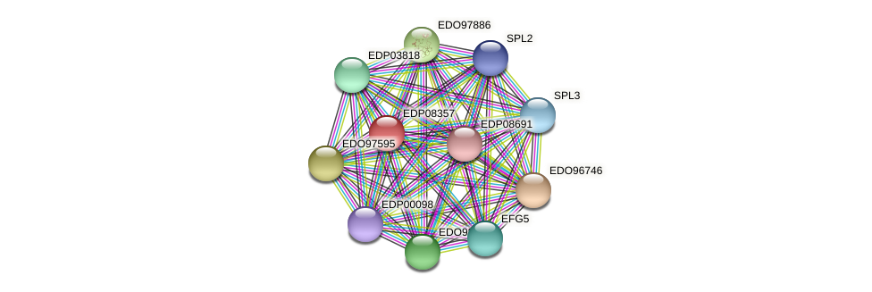 EDP08357 protein (Chlamydomonas reinhardtii) - STRING interaction network