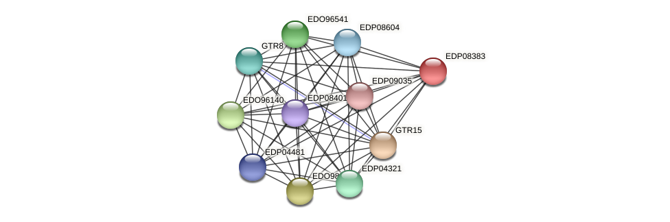EDP08383 protein (Chlamydomonas reinhardtii) - STRING interaction network