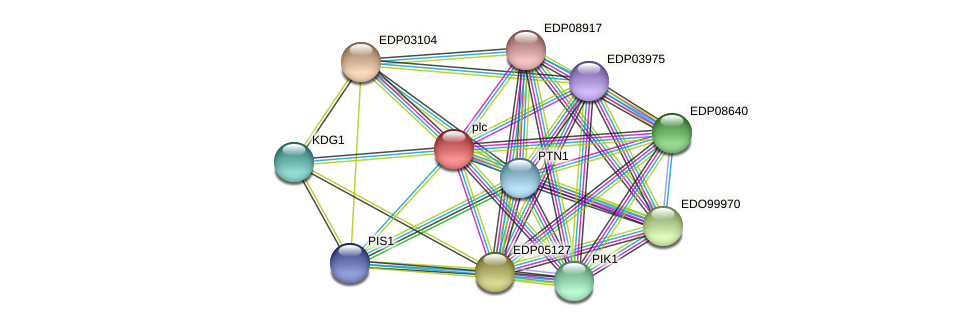 EDP08479 protein (Chlamydomonas reinhardtii) - STRING interaction network